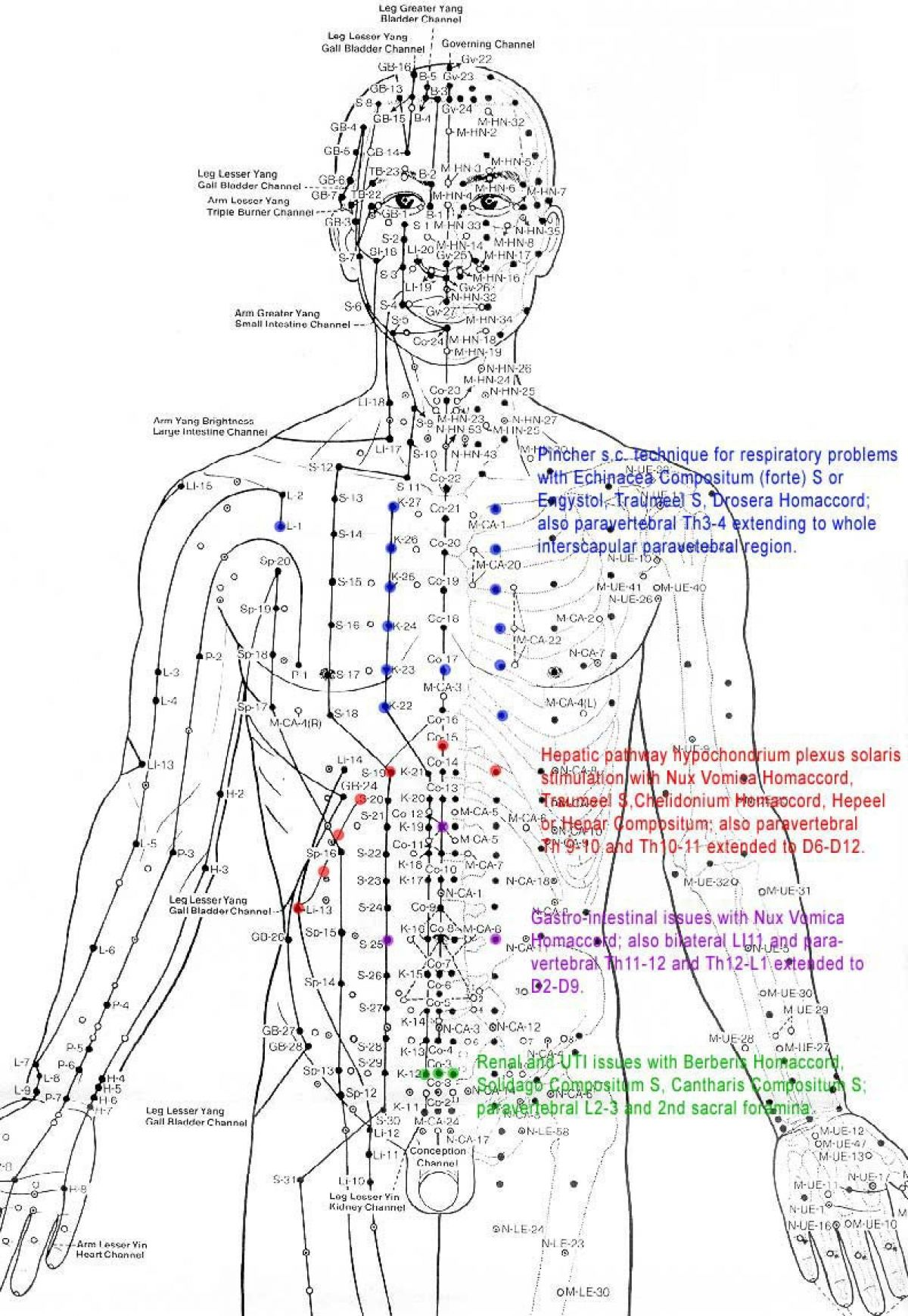 The (re)-Discovery of the Human Energy Field - Think ...